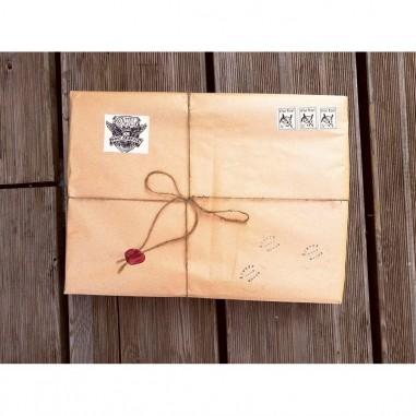 Mystery Wand box : bacchetta...
