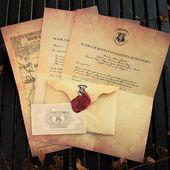 📢 Avete ancora pochi giorni per approfittare dello sconto del 20% sulla lettera di ammissione alla 🏰 scuola di magia e stregoneria di Hogwarts ✏️ personalizzata col vostro nome. . 🛒 Inserisci il codice sconto: LETTERA20 e potrai avere la tua lettera personalizzata per soli 13€ . 🔗 WWW.ALWAYSWANDS.COM 🔗