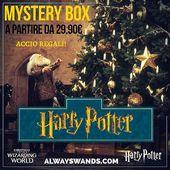 ⚡Quale miglior regalo per un Potterhead se non una mystery box a tema Harry Potter della propria casa preferita? 😍 ⚜️Le trovate in due versioni: BASIC da 29.90€ e PREMIUM da 59.90€. 🏷️ ➡️Selezionate la tipologia, scegliete la casa e il gioco è fatto!🎉 🇮🇹 Le originali sono solo @alwayswands e le trovate sul sito www.alwayswands.com 🛒  #potterhead #pottermore #harrypotter #mysterybox #alwayswands #regalidinatale #hogwarts #magic #bacchette #grifondoro #serpeverde #corvonero #tassorosso